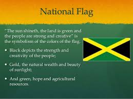 What Is The Meaning Of The Hibiscus Flower - national symbols and heroes of jamaica