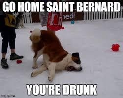 Hipster Dog Meme - the catholic hipster weblog i googled st bernard memes in