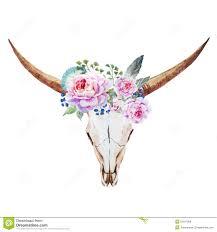bull skull watercolor stock vector image 53937069