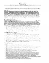 Sample Resume For Finance Executive by Sample Resume Finance Manager Car Dealership Create Professional