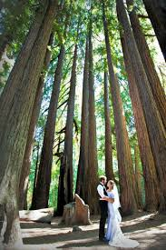 northern california wedding venues roaring c railroads northern california wedding venue up to