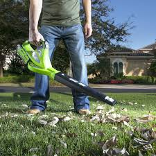 Cleaning Tips For Home The Best Battery Operated Leaf Blower Reviews Inside Reviewed