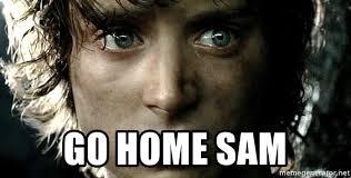 Sam Meme - go home sam go home sam meme generator