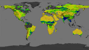 Soil Maps Looking For Salt Seeing Soil Moisture Image Of The Day