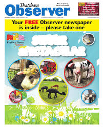 Hi Brinks Burglar Buster 2 Security Yard Sign 26 August 2015 Thatcham Observer By Newspapers Issuu