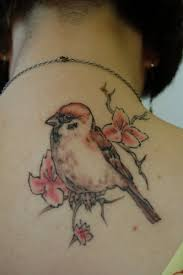 cool sparrow tattoos traditional outline sparrow tattoo design by metacharis