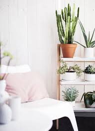 10 Best Houseplants To De by The 10 Best Winter House Plants Hunting For George Community Journal