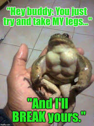 Hey Buddy Meme - which is why i wouldn t eat froglegs imgflip