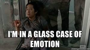 Glass Case Of Emotion Meme - the walking dead meme of the day tanya giaimo