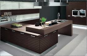 Interior Design For Kitchen Home Design Ideas - Amazing house interior designs
