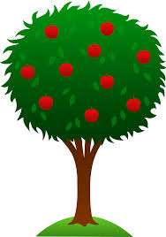 animated fruit tree clipart library clip library