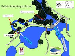 Geocache Map Gc3mhwz Baldwin Swamp Fishway Traditional Cache In Queensland