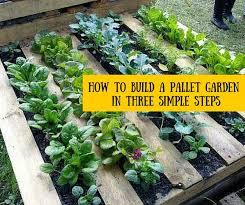 best 25 pallet gardening ideas on pinterest pallet garden