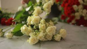 White Roses For Sale Collection Of Beautiful Roses For Sale At A Floristic Shop Stock