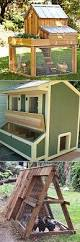 how to build an inexpensive chicken coop http