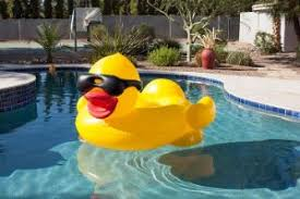Amazon Pool Floats Amazon Com Game Derby Duck Inflatable Swimming Pool Float With