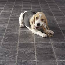 Is Laminate Flooring Good For Pets Flooring Suitable For Dogs Carpetright Info Centre