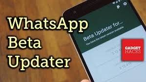version of whatsapp for android apk get automatic updates to the whatsapp beta on android how