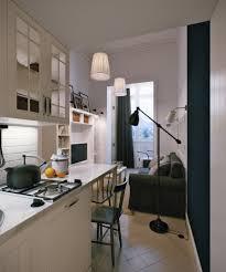 Narrow Kitchen Table by Contemporary Narrow Kitchen With Ideas Hd Gallery 16676 Fujizaki