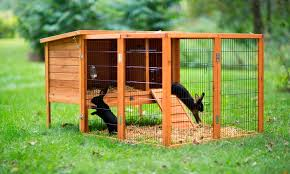 56 off on prevue pet products rabbit hutch groupon goods