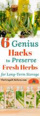 best 25 long term storage ideas on pinterest emergency