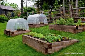 fall planting winter gardens how to grow vegetables all year