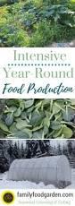 year round biointensive gardening guide