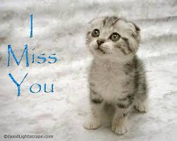 I Miss U Meme - 45 cute miss you meme pictures images wallpapers picsmine