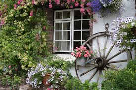 the english cottage cottage window websters wildshots