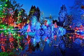 vancouver christmas light maze family vancouver attractions information vancouver lookout at