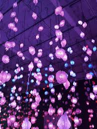 new museum light exhibit pipilotti rist pixel forest at the new museum in new york on bowery