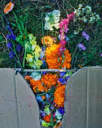 Images Flowers Cathy Horyn Visits Floret Flowers