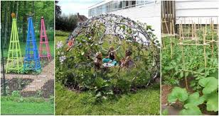 Support For Climbing Plants - diy garden supports for every type of plant