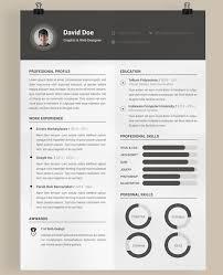 Professional Resume Design Templates Charming Design Free Curriculum Vitae Template Picturesque