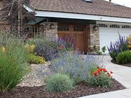 best 25 california front yard landscaping ideas ideas on