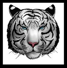 white tiger color by hellsong diabla on deviantart