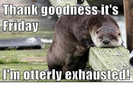 Exhausted Meme - thank goodness it s friday im otterly exhausted friday meme on