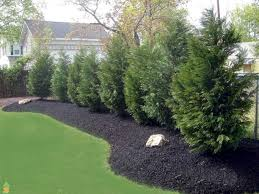 Fence Landscaping Ideas 50 Backyard Privacy Fence Landscaping Ideas On A Budget Backyard