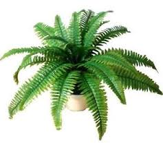 artificial plants artificial plants ebay