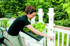 Aeroponic Vertical Garden A Home Bio Digester Produces Bio Gas For Cooking From Food Scraps