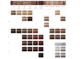 igora royal hair color color to develiper ratio igora royal product range