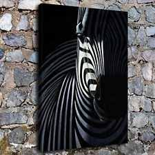 zebra print decor ebay