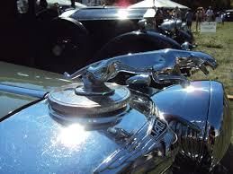 78 best jaguar leapers images on jaguar car and
