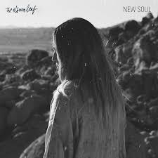 new soul the album leaf