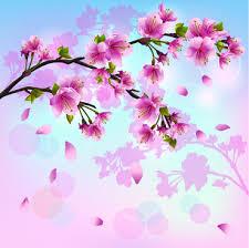 cherry blossom tree vector free vector 5 721 free vector