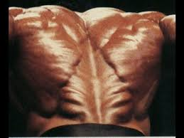 tree lower back your lower back ripped