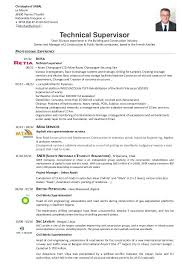 Employment Specialist Resume Sample Resume For Construction Site Supervisor Network Specialist