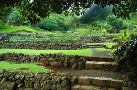 Gardens And Landscaping Ideas 25 Beautiful Hill Landscaping Ideas And Terracing Inspirations