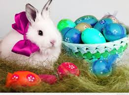 Easter Egg Quotes Happy Easter Bunny Wallpapers And Quotes
