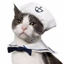 White Cat Halloween Costume Adjustable Pet Cat Costume Kitty Puppy Sailor Suit Pet Party